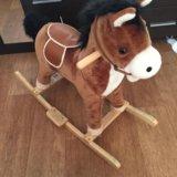 Музыкальная лошадка качалка. Фото 1. Иркутск.