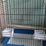 Клетка для крупных попугаев. Фото 1. Ижевск.