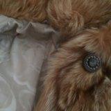 Мех шикарного енота. Фото 2.