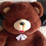 Медведь большой новый. Фото 1. Тюмень.