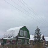 Спил деревьев, спилить дерево. Фото 4. Великий Новгород.