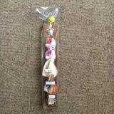 Ракушки. сувенир с мальдив. Фото 1.