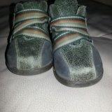 Ботинки. Фото 2. Таганрог.