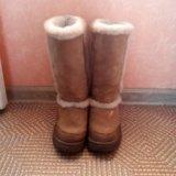 Сапоги зима. Фото 3. Кострома.