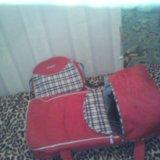 Коляска+ дождевик, переноска  и сумочка. Фото 3. Томск.