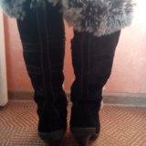 Сапоги зимние натуральная замша-мех. Фото 1.