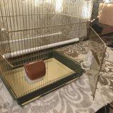 Клетка для попугаев. Фото 4.