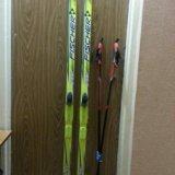 Лыжи классические. Фото 1.