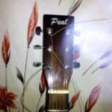 Продаю гитару фирмы peal. Фото 1. Москва.