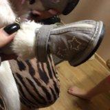 Сапожки для собачки мелкой породы. Фото 4.