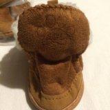 Обувь для собак. Фото 2. Брянск.
