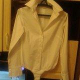 Боди - рубашка. Фото 1.