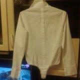 Боди - рубашка. Фото 3.