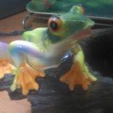 Игрушки лягушка. Фото 2. Обнинск.