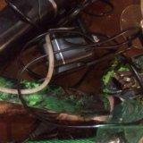 Аквариум. Фото 4.