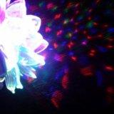 Светящийся цветок. Фото 2. Видное.