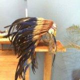 Шапка индейца. Фото 1. Якутск.