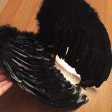 Крылья новые. Фото 3.