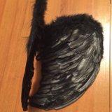 Крылья новые. Фото 2.