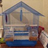 Клетка для волнистого попугая. Фото 1.