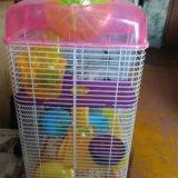 Клетка для хомяка. Фото 1.