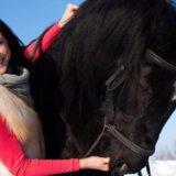 Зимние прогулки на лошадях. Фото 2. Южно-Сахалинск.