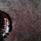 Новые зимние сапоги. Фото 3.