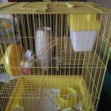 Клетка для крыс. Фото 1. Владивосток.