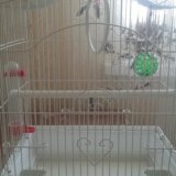 Клетка для птички. Фото 2.