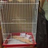 Большая клетка для попугаев. Фото 3. Зеленоград.