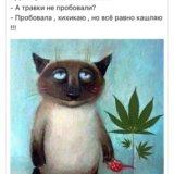 Л.М. М.