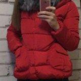 Укороченный пуховик-куртка. Фото 2.