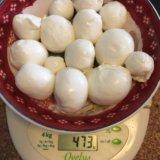 Закваски и ферменты для сыра. Фото 3. Рыбинск.