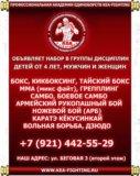 Групповые и персональные тренировки бокс самбо мма. Фото 2.