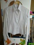 Белая рубашка. Фото 3.