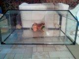 Аквариум. Фото 1.