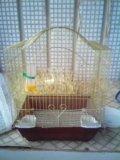 Клетка для птиц. Фото 1.