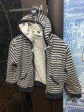 Курточка детская(уни секс). Фото 3.