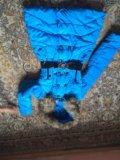Лыжный костюм и зимняя куртка. Фото 2.