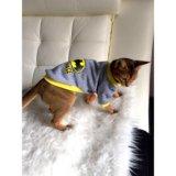 Одежда для cats & dogs. Фото 1.