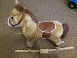 Лошадка. Фото 1.