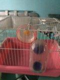 Клетка для комячка. Фото 2.