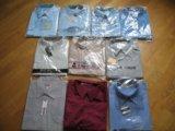Мужские рубашки, 10 штук. 42/43 по вороту. Фото 1.