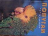 Книга про попугаев. Фото 1.