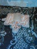Игрушка подушка. Фото 1.
