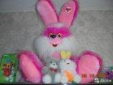 Заяц. Фото 1.