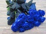 Розы черные,синие,радужные,классика. Фото 2.