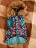 Одежда для собак  2 в 1. Фото 1.