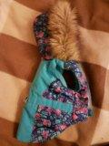 Одежда для собак  2 в 1. Фото 2.