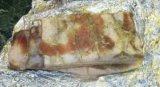 Сало свиное соленое. Фото 2.